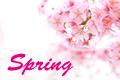 春のメンズファッション